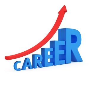 Manager Tools Career Tools Resume